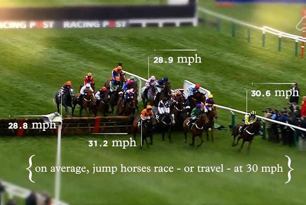 Racing Explained' to demystify horse racing | www